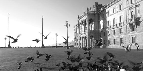 Inviolabilità Porto Franco Nord: Trieste Libera diffida le autorità italiane